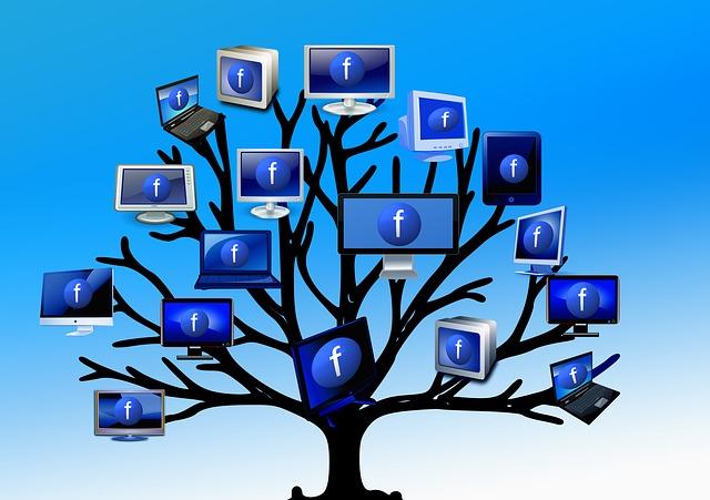 tree-426062_640